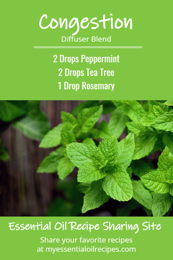 Infographic - Recipe for Congestion Diffuser Blend with Peppermint, Tea Tree and Rosemary