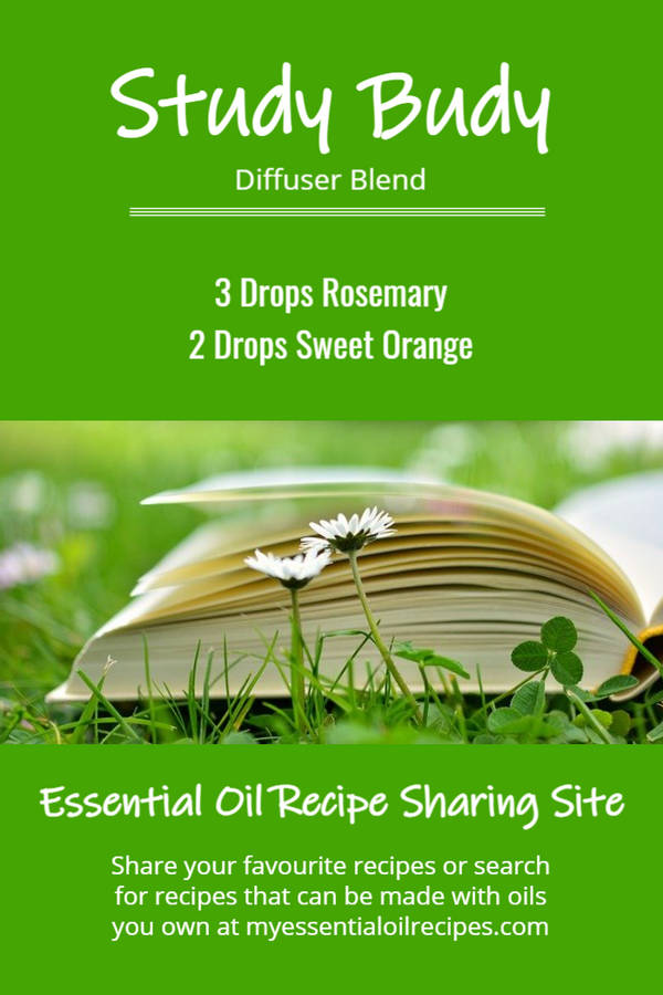 Infographic - Recipe for Study Budy Diffuser Blend with Rosemary and Sweet Orange Essential Oils