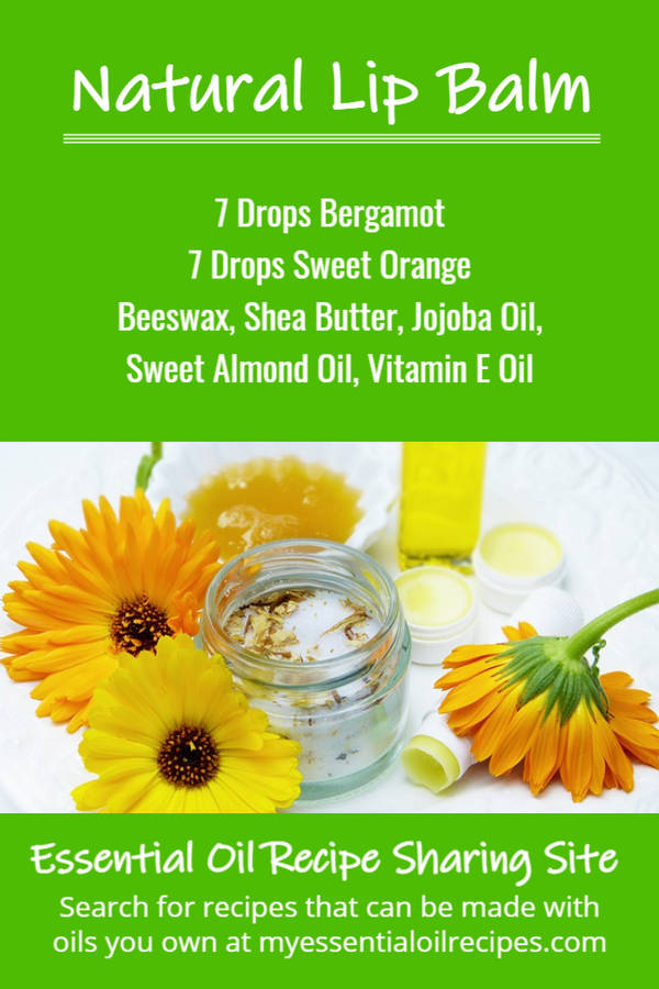 Infographic - Recipe for Natural Lip Balm with Bergamot and Sweet Orange Oils
